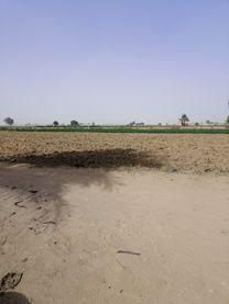 أرض زراعية 5 فدان للبيع بسمسطا