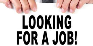 ابحث عن عمل فى الادارة