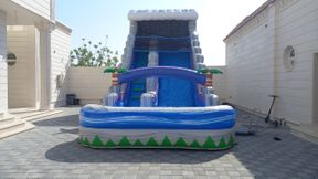 We announce to our valued customers the arrival of new water toys