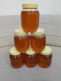 New Syrian honey Spring
