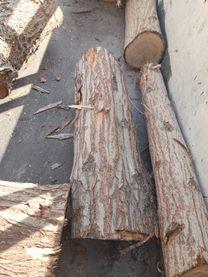 ازالة الاشجار وتقطيعها