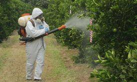 التميز للمبيدات الحشرية والزراعية
