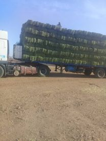 Shadool Green Up Commercial Feed Company
