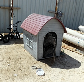 Dog house for sale 11