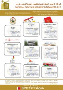 Establishing companies, auditing accounts and clearing visit visas