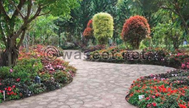 تجميل حدائق