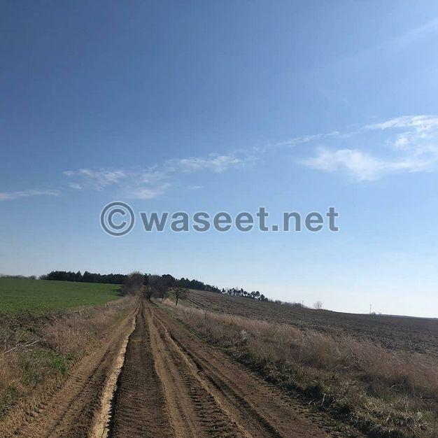 ارض زراعية للبيع فى تركيا اسطنبول