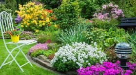 تنسيق الحدائق