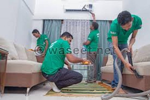 Cleaning Sofa & Carpets