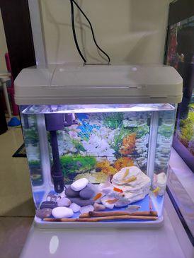 Full Aquarium Fittings