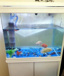 حوض سمك للبيع 8