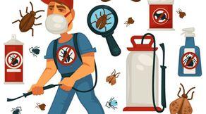 خدمات الريادة للتخلص من الحشرات
