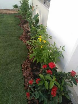 Gardens services