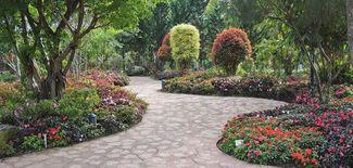 خدمة تنسيق حدائق