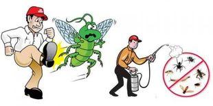 خدمة مكافحة الحشرات والافات