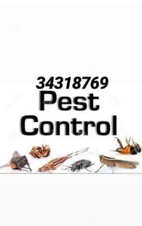 خدمة مكافحة الحشرات