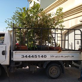 Transport, delivery, dismantling and installation of furniture
