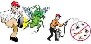 Distinguished Care Company for Pest Control