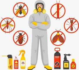 شركة الاخوه لمكافحة الحشرات