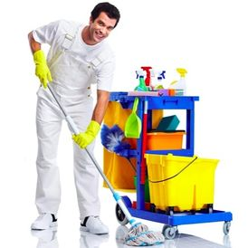 Al Salam Company for Cleaning Services in the UAE