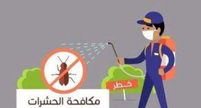 شركة كلأي هاوس لمكافحة الحشرات