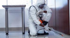 Pest Control Company in Dubai