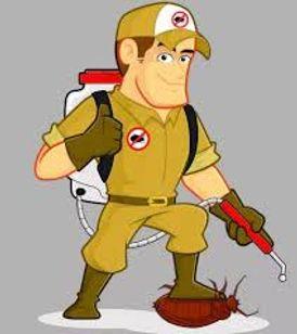 Pest Control Company in Ajman