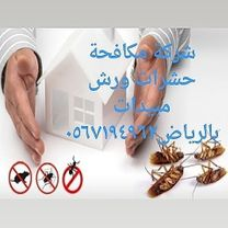 شركة مكافحة حشرات ورش مبيدات بالرياض والدمام 0567194962 شعاع...