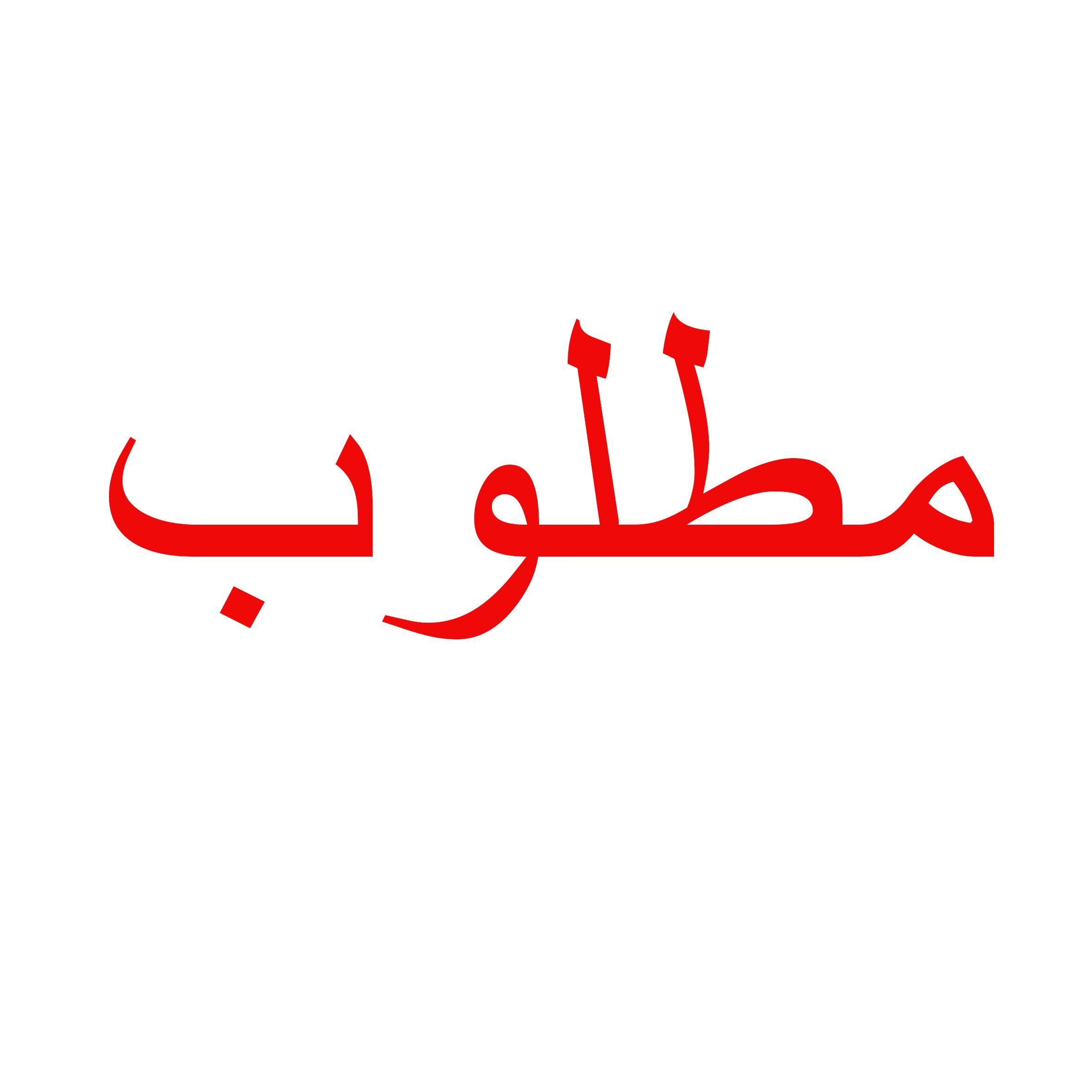 مطلوب انسه او سيده للعمل بمعرض فلاتر بالنزهه2