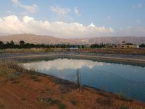 للبيع ارض مروية 55000 متر مربع مميز بتربته...