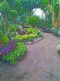 فني مشاتل وحدائق