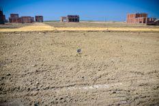 قطعة أرض ع طريق دمياط بورسعيد