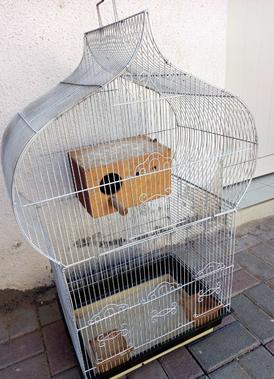 قفص طيور حجمه كبير للبيع