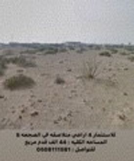 Invest 4 contiguous land in Sajaa