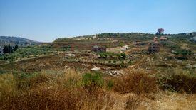 ارض 2640م للبيع في سلعا