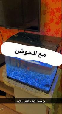 للبيع حوض سمك