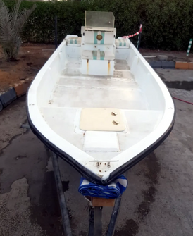 For sale boat 24 feet