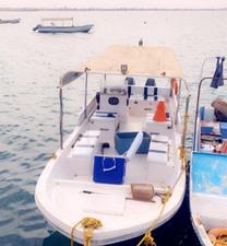 للبيع قارب نزهه مصنع (النورس )