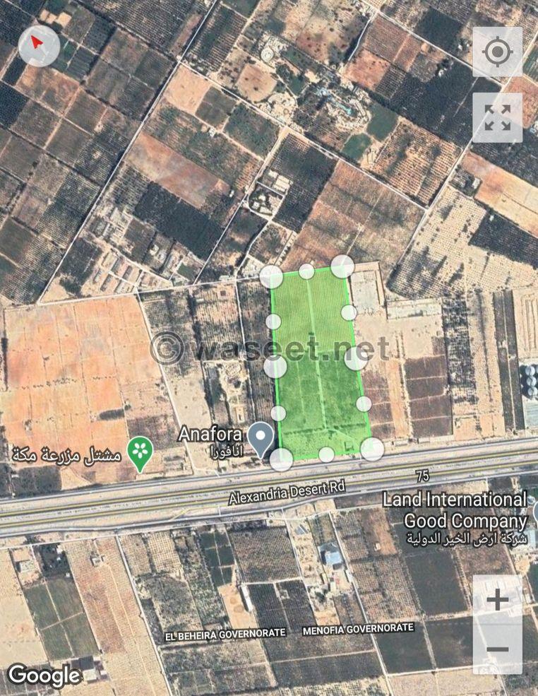 للبيع مزرعة على طريق القاهرة الإسكندرية الصحراوي