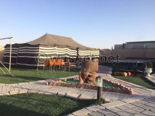 للايجار مخيم الفايه العائلي - ابوظبي