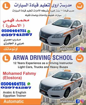Automatic light driving instructor