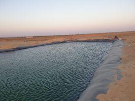 مزرعة بسند ملكية في مصر
