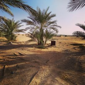 Farm for sale in Al Wagan