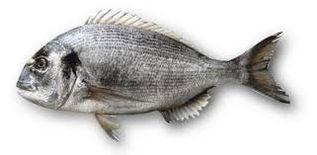 مطعم السمكة الماسية