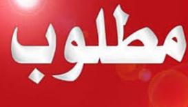 مطلوب اثنين نقاشين مصريين للعمل