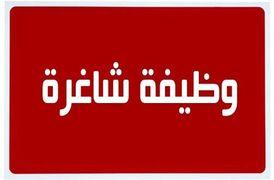 مطلوب لصيدلية بكوبري الجامعة - كامب شيزار 6