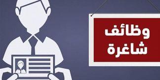 مطلوب للتوظيف  في السعودية باحث متخصص في المقاييس النفسية