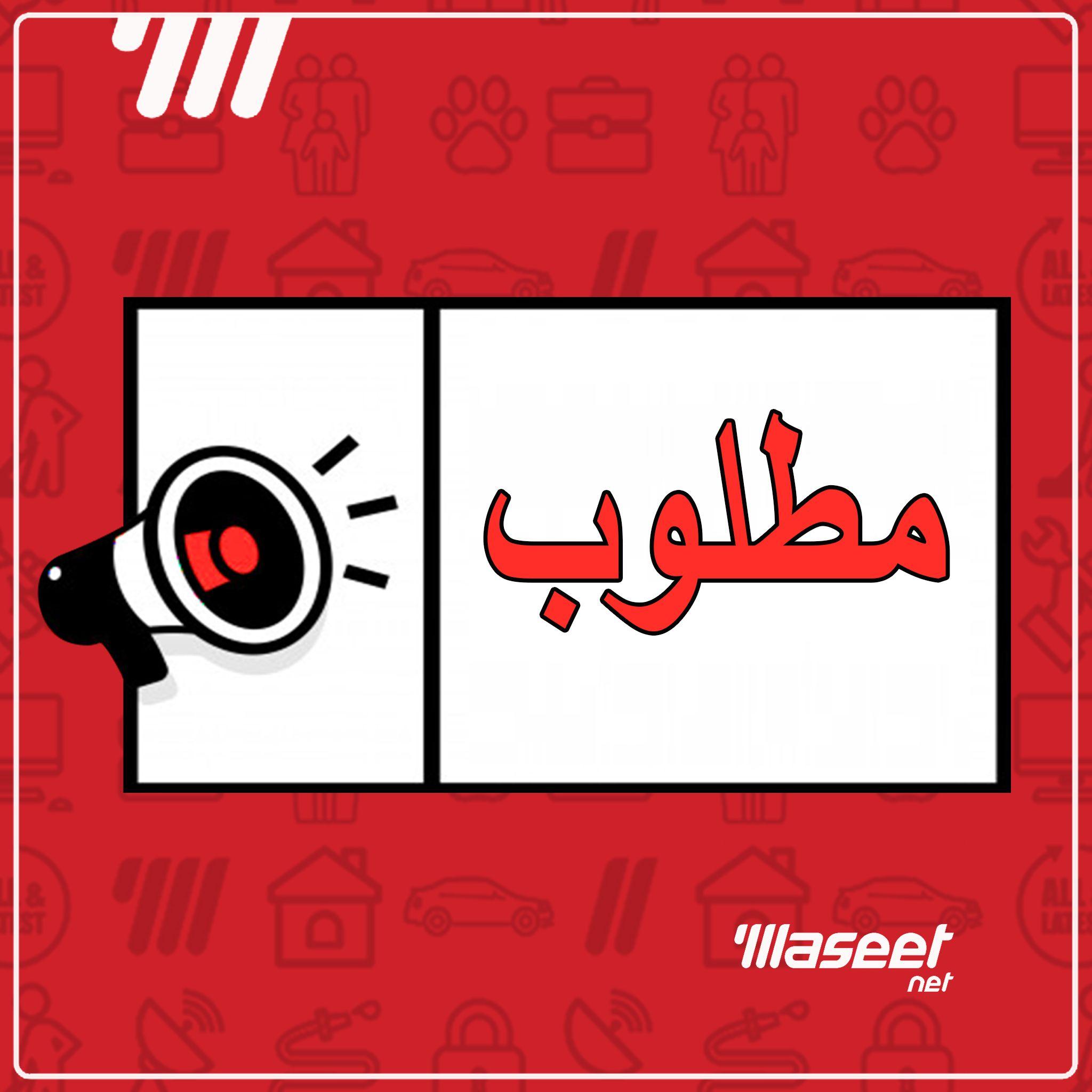 مطلوب مكتب احمد الابيض للمحاسبة