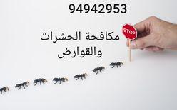 مكافحة الحشرات والقوارض في الكويت...
