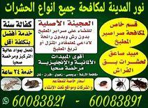 مكافحة حشرات